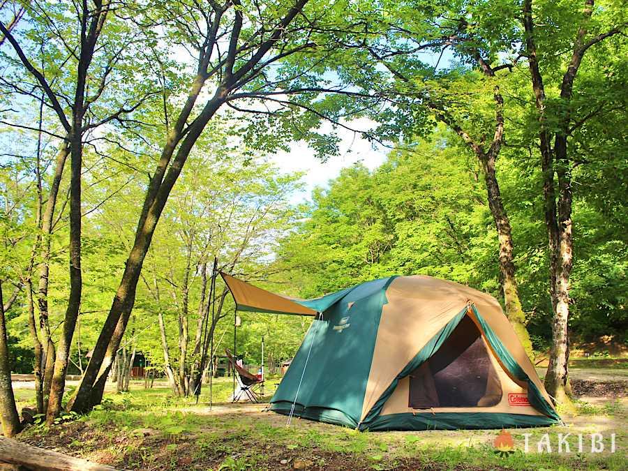 涼しく過ごそう!夏キャンプの暑さ対策,直接日光が当たらないところにテントを張る