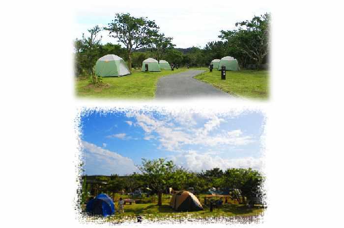 国頭村環境教育センターやんばる学びの森(沖縄)